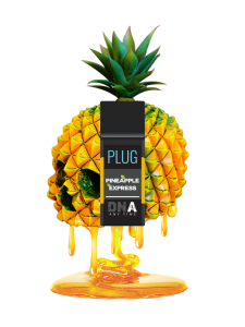 plugplay pineapple express